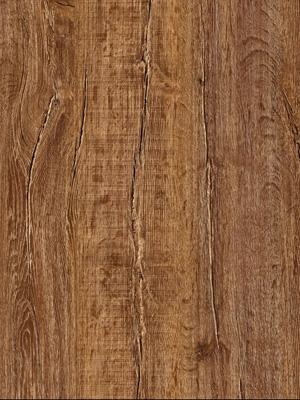 South Dakota Oak