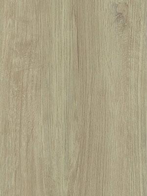 Fissure Oak Grey