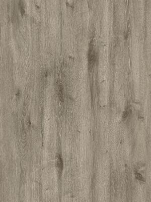 Swiss Oak Bern