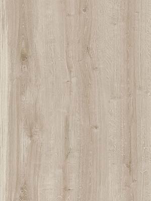 Torina Oak Candido